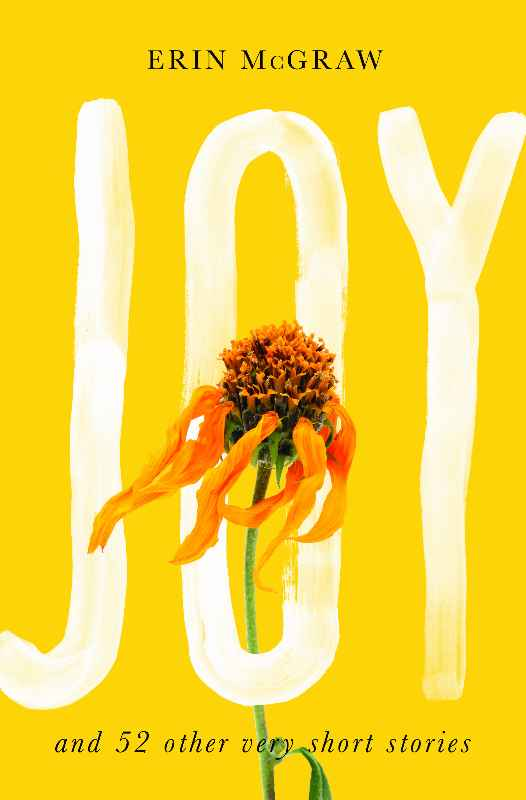 Joy Book Cover by Erin McGraw